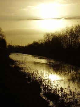 River of gold by Ganox