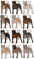 APBT Adopts // SEE DESCRIPTION by Serphire