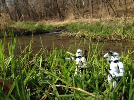 Storm Troopers in Swamp by TheLittlestGiant