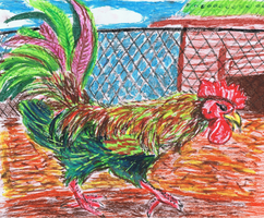 Rooster by ConkerTSquirrel