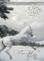 Come Fly With Me :Christmas Manip 2011: by SilverNight1079