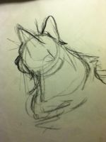 Quick-Cat Life Drawing by KohakuRivers