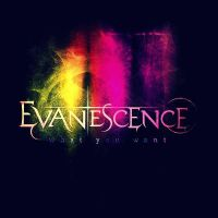 Evanescence What You Want by bubblenubbins