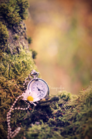 Time will come by Isagrafie
