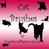 Cat  Brushes 1 by icedance4ever-stock