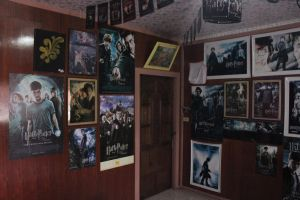 Harry Potter wall by ProfBell