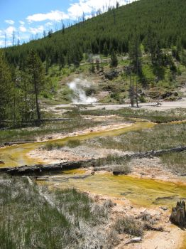 Sulfur River by TheLadyGrey