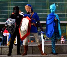 LoZ Cosplay | Youmacon 2012 by Abiadura