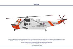 Sea King Norway 1 by WS-Clave
