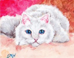 White Kitty by caitiedidd
