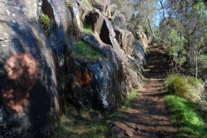 Shady Path Stair I 'Land' by DruidWuStock