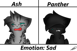 The Brothers' Emotions: #1 - Sad by PanthergazeKitty