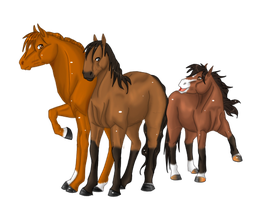 My three horses by nhinhe
