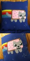 Nyan cat pillow by Darca23