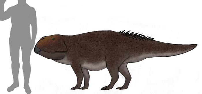 Fallow Earth: Limenyceratops pingyuanensis by Dragonthunders