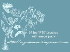 34 leaf brushes for PS 7 by sugarhouses