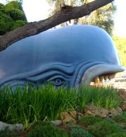 jorge the whale by loverlyness