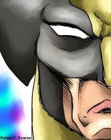 Wolvie-face by R-Wolverine