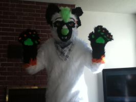 Fursuit for Sale~! 550$! Badge,Accessories. by CloudExile16