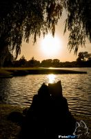 Sunset of Two Lovers by FotoFurNL