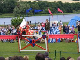 Jousting - Knight 24 by Axy-stock