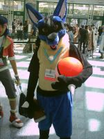 AX 2012 Lucario by Surferbrg