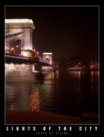 Lights of the City 4 by vikingexposure
