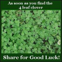 Share For Good Luck! by AnImEcHiCk123456789