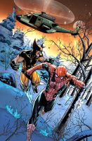 Spiderman and Wolverine by deffectx