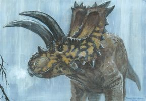 Horns15: Coahuilaceratops by tuomaskoivurinne