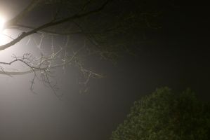 More fog in the evening by Budeltier