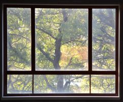 Fall in the window by TomKilbane