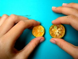 Citrus by authenticDOLLY
