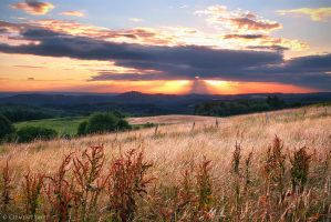 End Of Spring by LG77