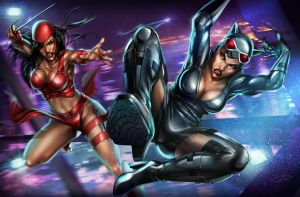 Catwoman vs Elektra by Aioras