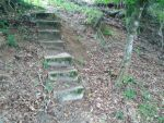 Stairs in the woods by Feu-et-Glace