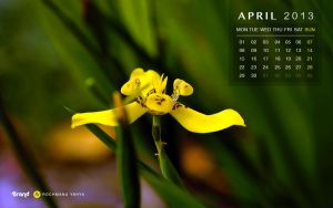 Free Wallpaper Calendar of April 2013 by yahya12