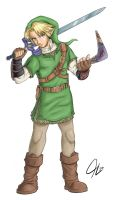 Colored Link, Finished by nefosik