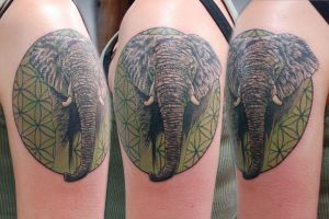 Elephant and Sacred Geometry by adammdesigns