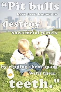 Destroy by CanisEnthusiast