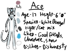 Ace- Reference Sheet by TheFoxDude