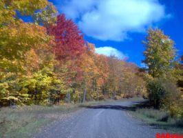 More Fall Colors 2!!! by SABeks