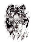 tiger detail tattoo by Blackthorn-Studios