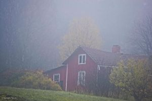 House in Fog by Toni-R