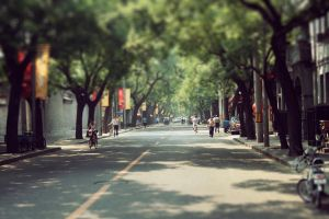 Streets of Beijing by dylanshaw