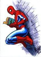 Spider-Man Reads by ADAMshoots