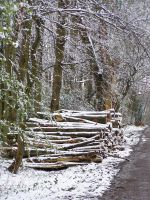 Snowy log pile... by chop-stock