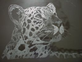 The Leopard by misbeavin