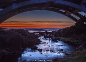 Spencer Creek Bridge by melmaya