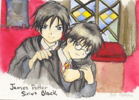 James and Sirius by Catl
